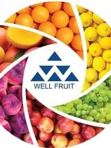 Юлия office  wellfruit  ru