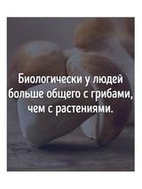 Владимир О